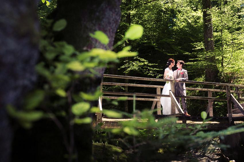 Photographe mariage dans Le Lavaux